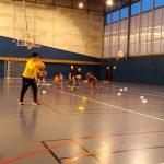 Read more about the article Nos basketteurs à l'honneur